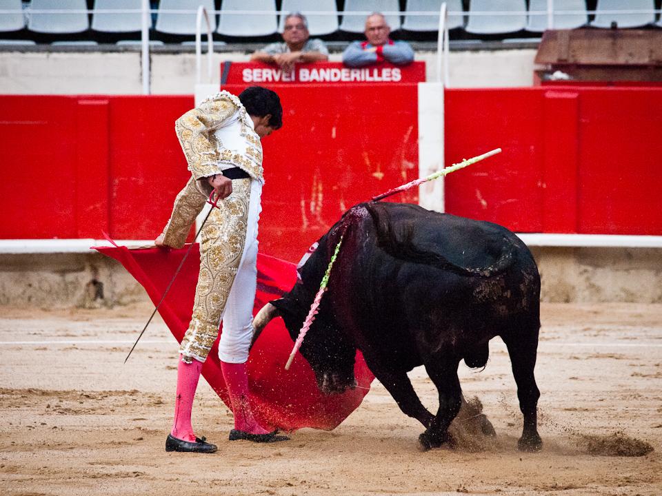 Barcelona: Bullfight, 2011